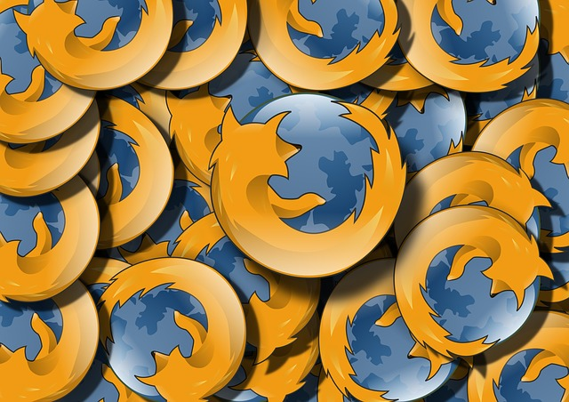 www prohlížeč