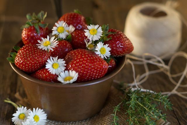 jahody a sedmikrásky